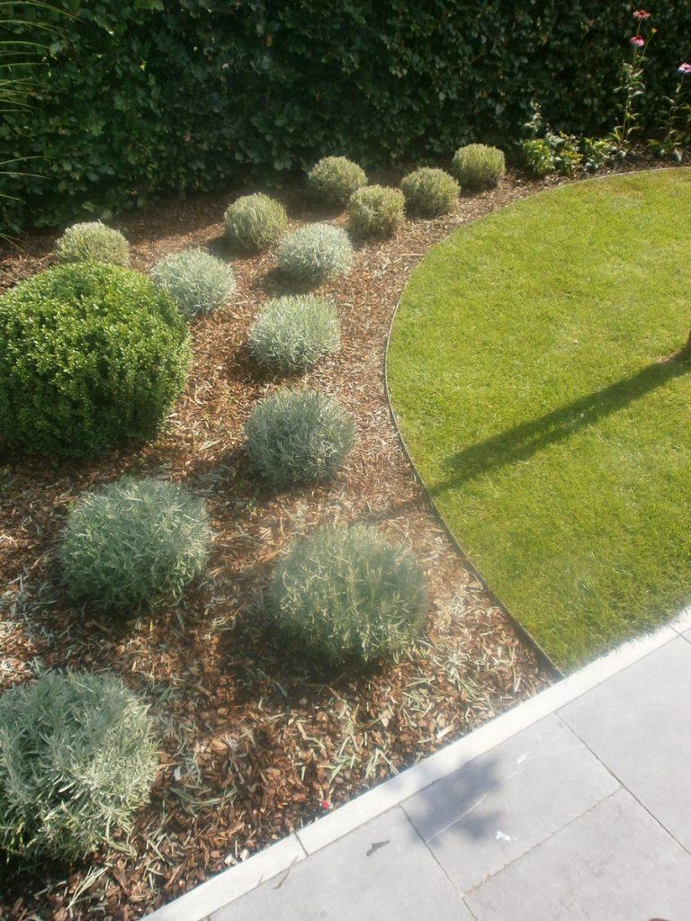 entretien jardin li ge jardin marechal hatert entretien de jardin. Black Bedroom Furniture Sets. Home Design Ideas
